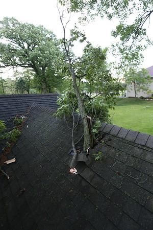 Storm / Tree Damage 5/17/2017