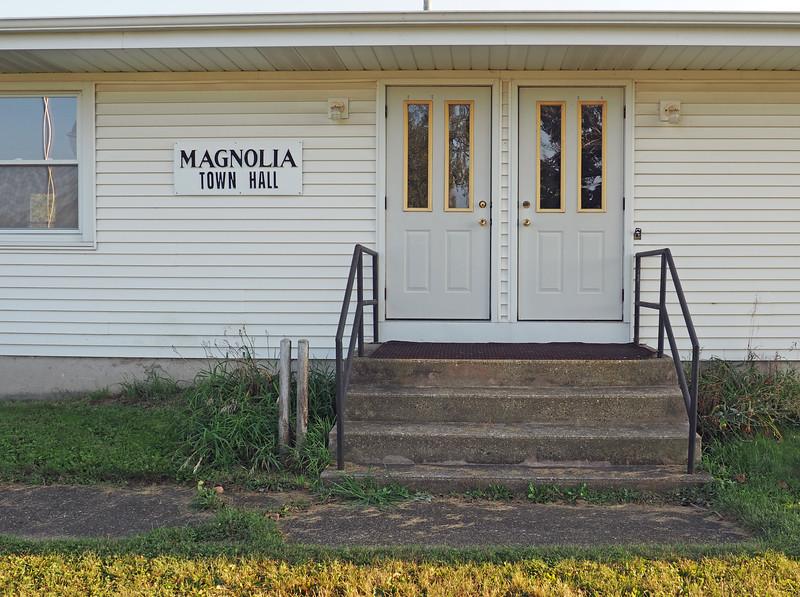 P9200778-magnolia.jpg