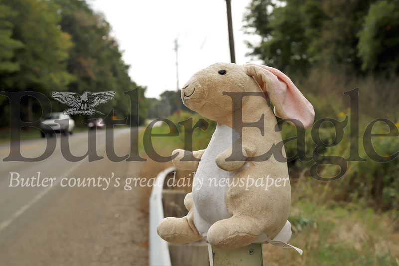 A stuffed rabbit watches traffic pass by on East Butler Road near the Rustic Ridge Mobile Home Park and East Butler. Passers by have noticed that the road has been populated by a number of continually alternating plush toys. Workers from a Saint Vincent DePaul warehouse in East Butler suspect the animals are coming from the warehouse dumbster. Seb Foltz/Butler