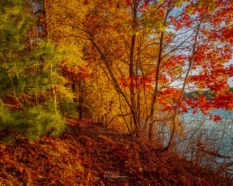 2020_10_Middlesex Fells20201106-3M3A7839_Luminar4-edit.jpg