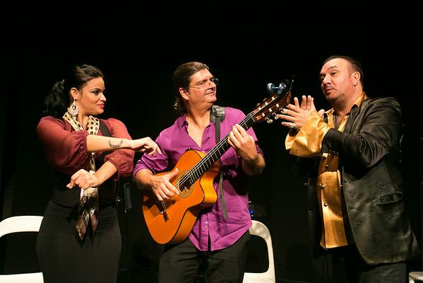 Bob Folse Flamenco 2014