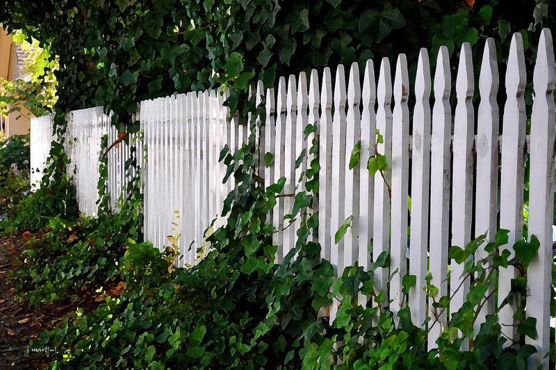 follow the fence 10-14-2011.jpg