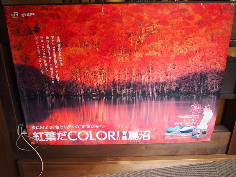 P9307842-color.JPG