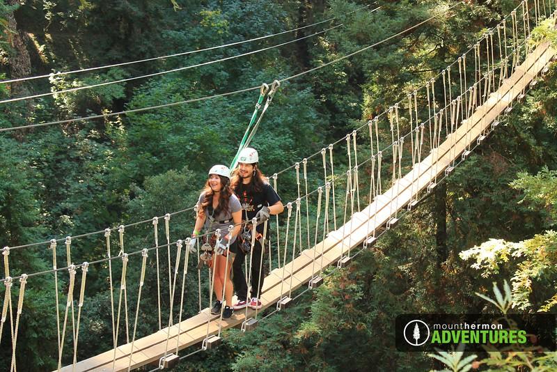 redwood_bridge_1473461828382.jpg