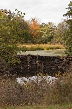 NJ-Somerset-Duke Farms