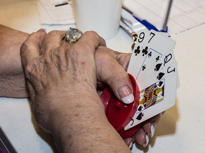 Senior Adult Game Night March 2015