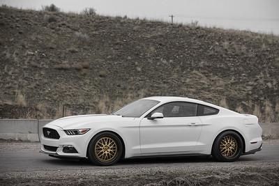 Mustangs (03.21.16)