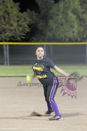 Forney High School JV Softball 2013