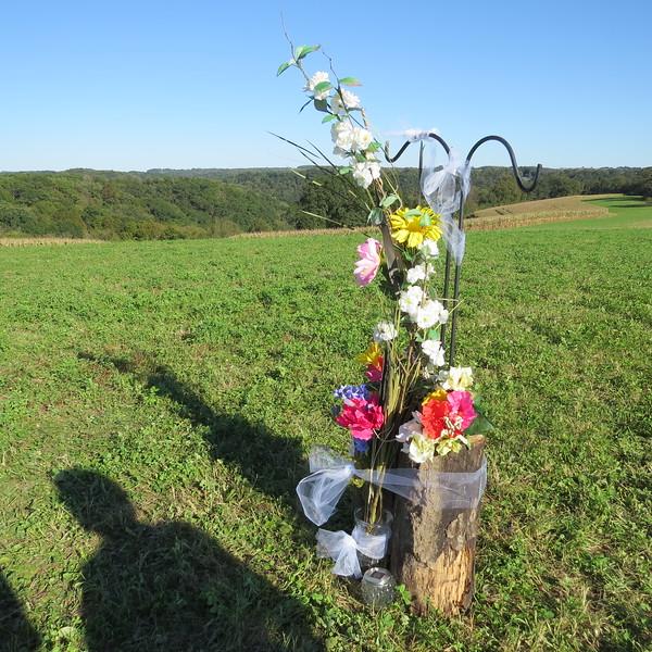 flowers with solar lamp.JPG