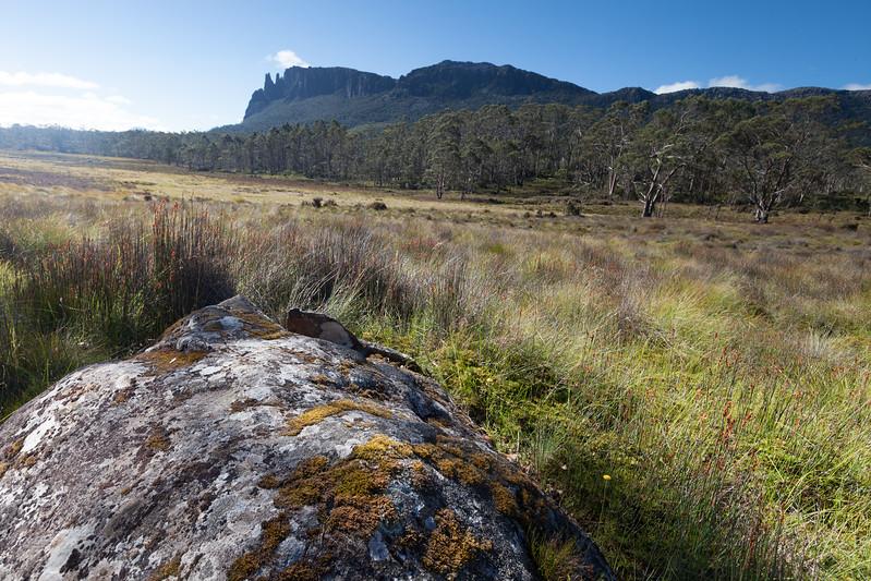 Tasmania_2015_153.jpg