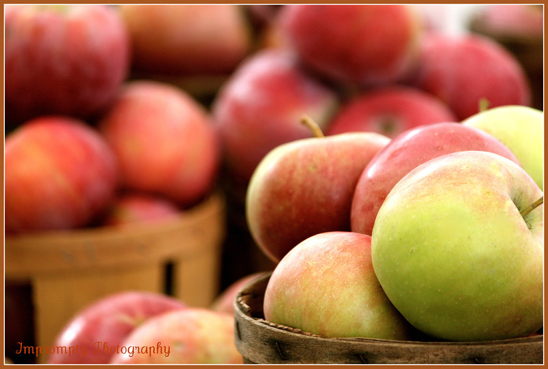 September 27, 2011. Apples from the Cronise Farm Market, Boonsboro, MD.