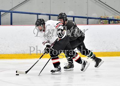 Shenanigans Hockey vs Battle Hamster