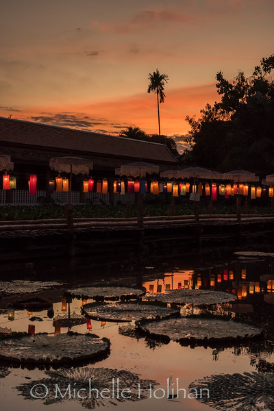Sunset at the lily pad pond in Wat Chet Lin Temple, Chiang Mai, Thailand
