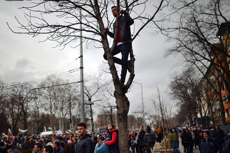 . A protester observes from a tree during an anti-monopoly  protest in Sofia on February 24, 2013. Tens of thousands of protesters rallied across Bulgaria on Sunday to denounce austerity measures and corruption plaguing the country, just days after the right-wing government was forced to resign.             DIMITAR DILKOFF/AFP/Getty Images