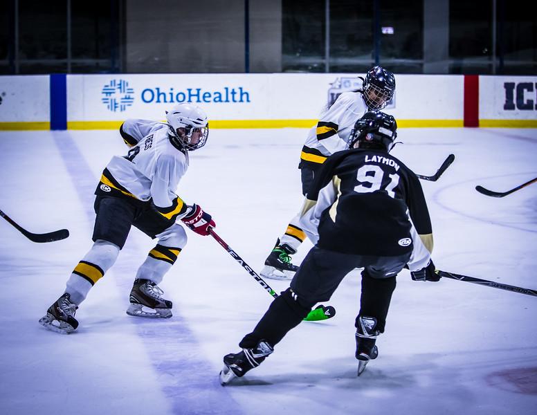 Bruins-246.jpg