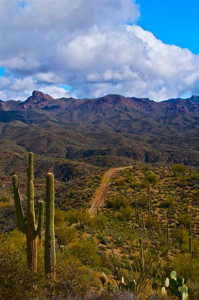 Box Canyon, AZ4.jpg
