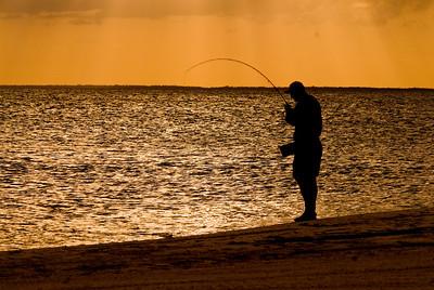 Isla Holbox Tarpon - Yucatan Peninsula