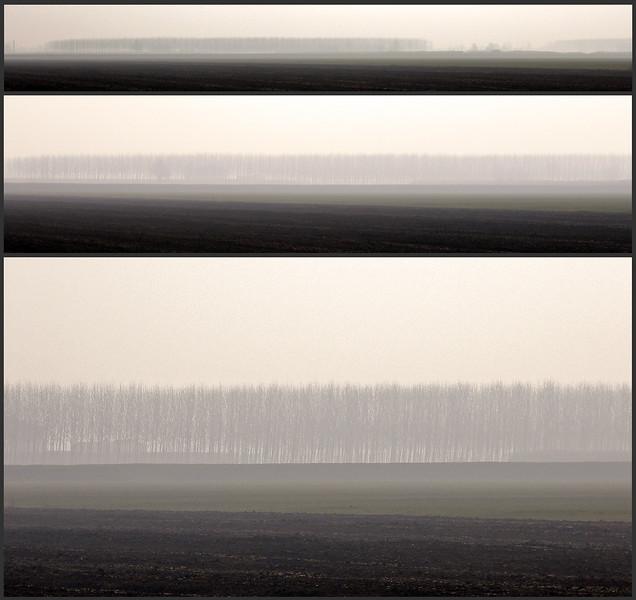 Early Morning - Albareto, Modena, Italy - February 25, 2009