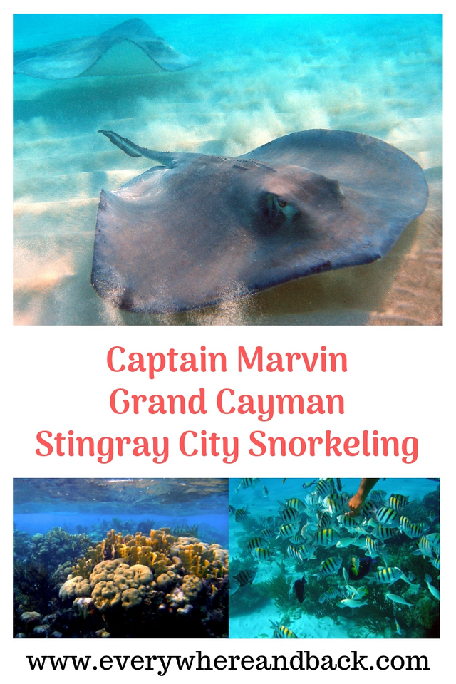Captain Marvin Grand Cayman Sting Ray City Snorkeling