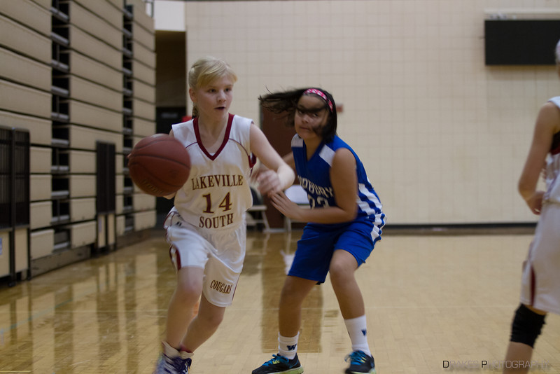 Lakeville South Tourney-98.jpg