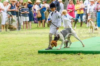 Junior Handlers