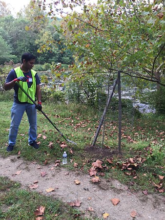 9.22.2017 Tree Maintenance at Lost Lake with Allegis Group