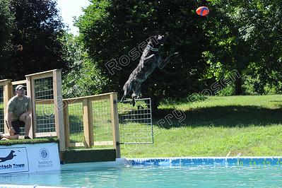 Splash 4 (Images 2826-3284)