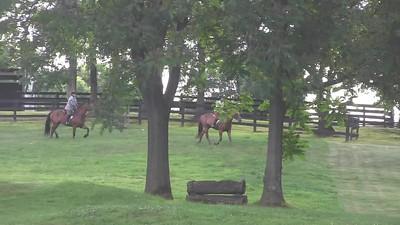 TSRC 2019-06-27 Last Frontier Farm Video