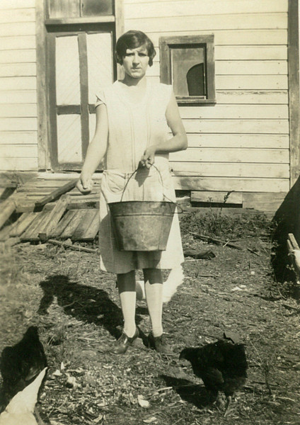 Maria Julia Sangiacomo feeding the chickens. Old barn near the entrance of the office off Highway 12/Broadway. 1929