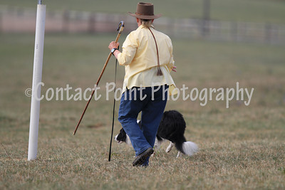 2010 National Sheepdog Finals - Nursery - Day3