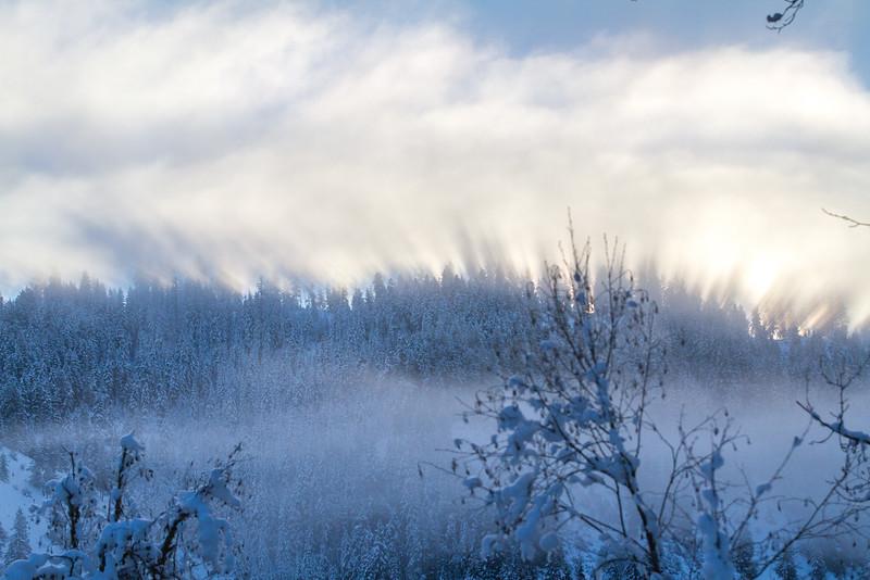 winter 2015-9795.jpg