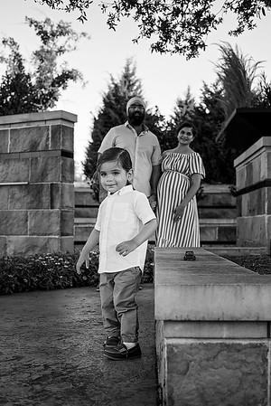 Singh Family 2020