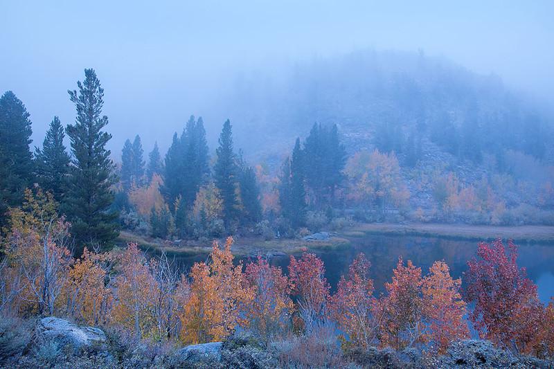 Foggy Fall Color North Lake Eastern Sierra 2.jpg