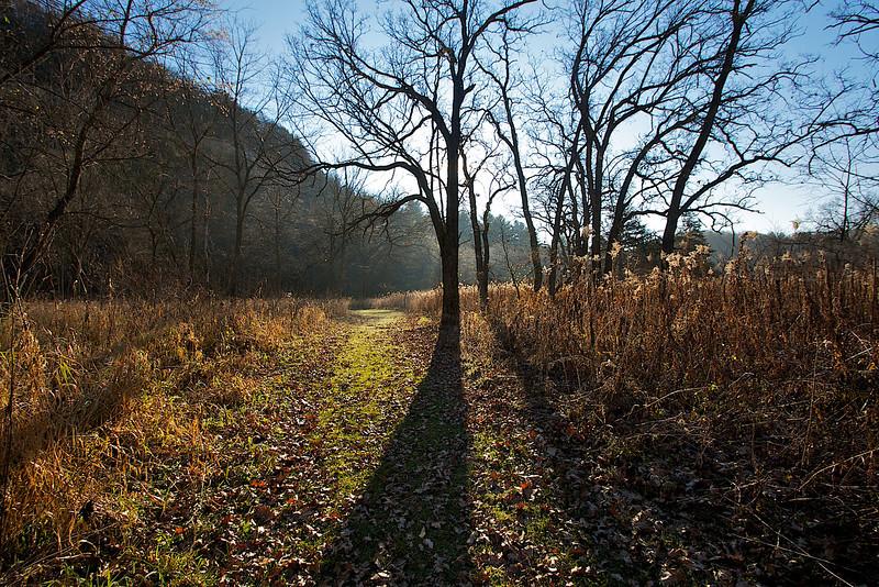 Hiking trail Whitewater State Park sunrise.