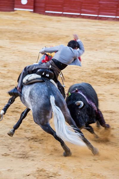 Bullfighting H22.jpg