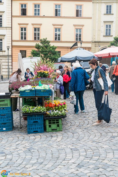 Cabbage-Market-04321.jpg