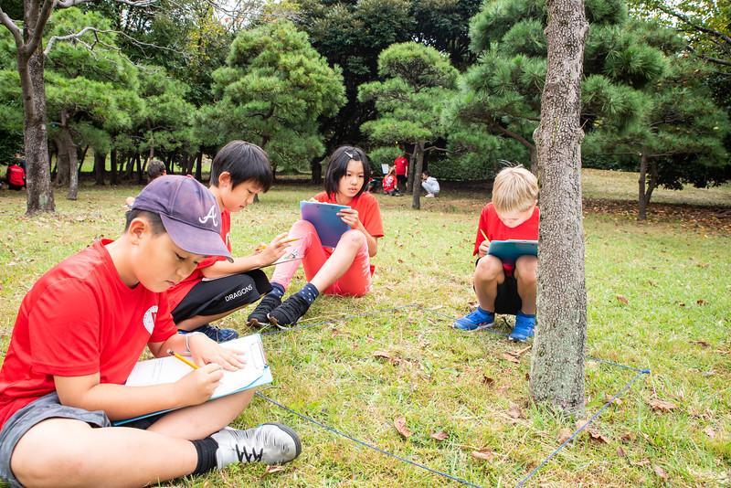 Grade 4-Negishi Park - Nature Observation-ELP_2880-2018-19.jpg