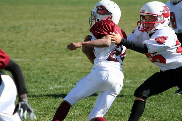 NYFA Cardinals vs Brighton Bulldogs