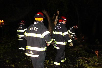 Tree Down, Schuylkill Avenue, Tamaqua (4-26-2011)