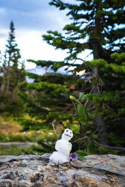 Cute Tiny Snowman and Flower on a rock in front of pine tree in Glacier National Park up in the Backcountry