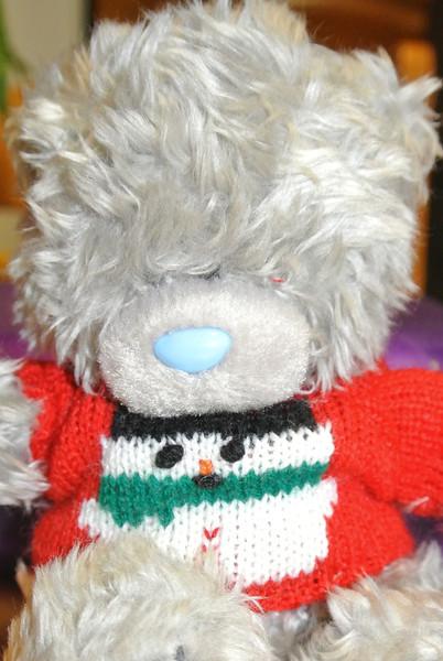 2013-12-25 KERST Bear 'Shaw' 001 (Swoi).JPG