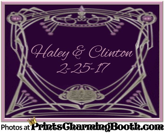2-25-17 Haley & Clinton Wedding logo.jpg