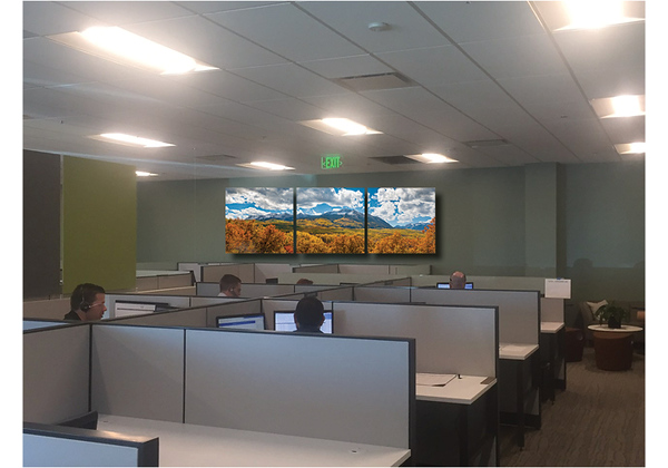 Cubical Green Walls2.jpg