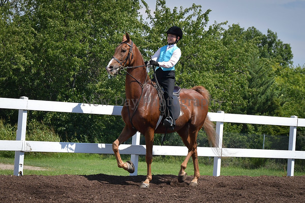 34B. Academy Horsemanship WT 11-17 Yr