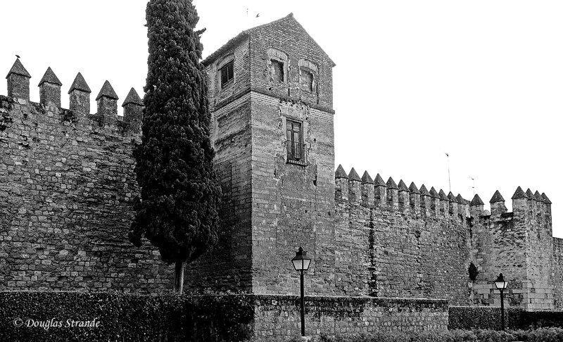 Thur 3/10 in Cordoba: Outside the wall of the Alcazar de los Rayes Cristianos (Fortress of the Christian Monarchs)