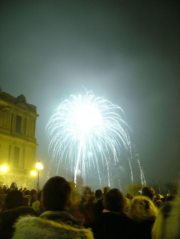 2004_1106allypallyfireworks0038.JPG
