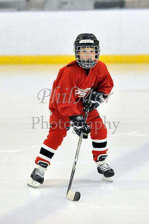 Red vs Green Elementary Ice Hockey 2012 - 2013