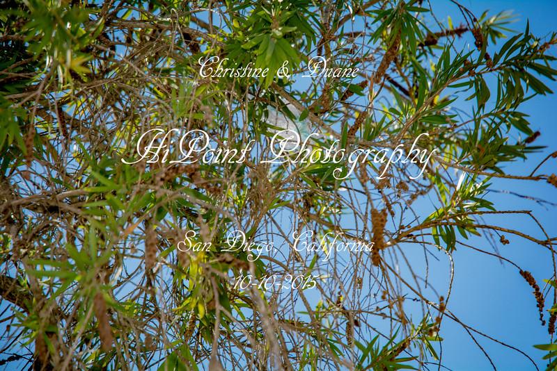 HiPointPhotography-7501.jpg