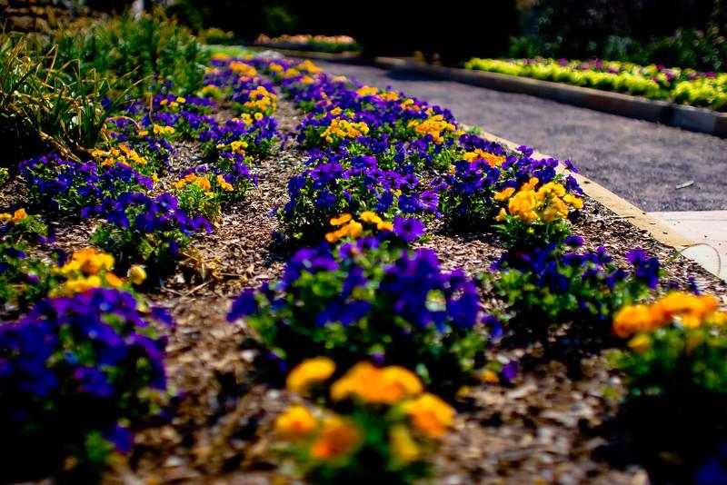 Duke_Gardens_2.jpg