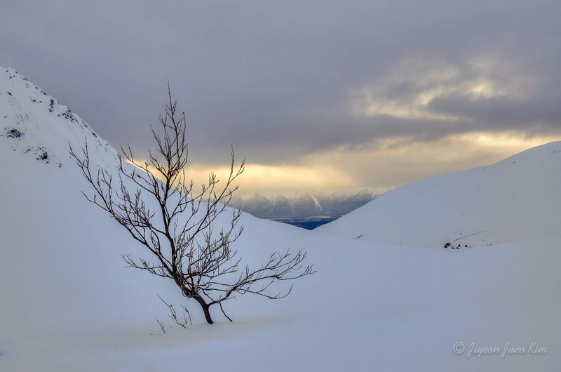 USA-Alaska-Matsu--2.jpg